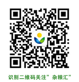 home_logo-7faec4c35d45a7f7f06495c30a478154a908f270d40468f83ef5f56c179bc2b9 (1) 副本.jpg